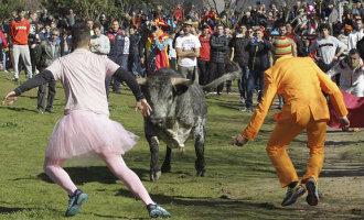 Man op de horens genomen door stier tijdens het carnaval stierenrennen in Salamanca (video)