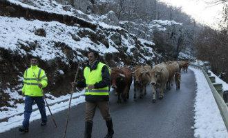 Het heeft weer gesneeuwd in Spanje (foto's)