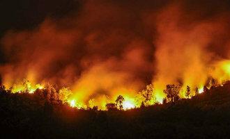 Nog steeds meer dan 30 bosbranden actief in Asturië