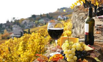 Meeste wijngaarden van de Europese landen zijn te vinden in Spanje