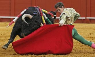 Balearen krijgen nieuwe dierenbeschermingswet waarbij stieren niet meer gedood mogen worden