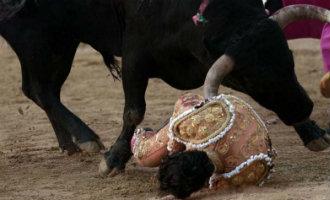 Spaanse stierenvechter in zuidwest Frankrijk om het leven gekomen nadat stier hem spiest na struikeling