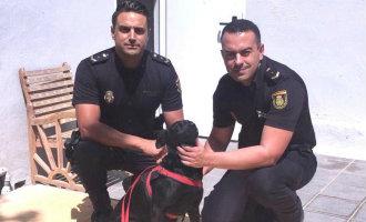 Agenten redden hond van verdrinkingsdood in Fuengirola omdat eigenaar daar zin in had
