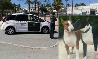 Vrouw wordt in Rojales aangevallen door twee loslopende bull-terrier honden