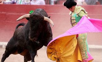 Minister-president Rajoy stapt naar het Constitutionele Hof vanwege anti stieren wet Balearen