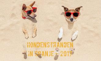 Overzicht van hondenstranden op de Balearen en aan de Middellandse Zee in Spanje