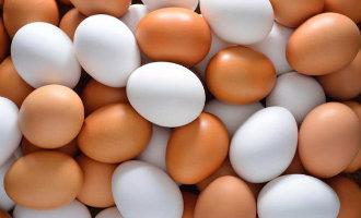 Spanje heeft geen last van de Nederlands/Belgische eiergate of gifeieren