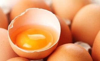 Met fipronil besmette eieren gevonden in Spaans Baskenland