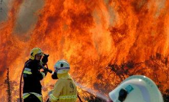 Grote bosbrand op Gran Canaria met 500 evacuees en meer dan 2.000 hectare natuur verwoest