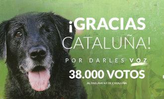 Partido Popular lijdt groot verlies in Catalonië en dierenpartij nadert Spanje's grootste politieke partij