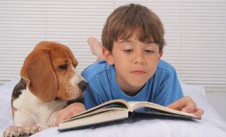 Politieke partij Podemos wil dat empathie voor dieren een educatieve kwestie wordt in Spanje