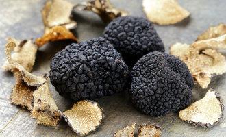 Er wordt steeds meer zwarte truffel geoogst in Spanje