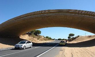 Spaanse Congres keurt plannen goed om wilde dieren op de weg te beschermen
