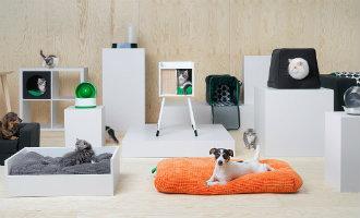 Spaanse ontwerpster maakt honden en katten meubels en accessoires voor Ikea