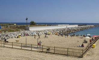 Hondenstrand Barcelona ook dit jaar weer open