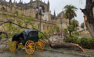 Mini-tornado zorgt voor veel schade in het historische centrum van Sevilla