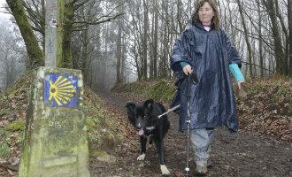 Bordercollie Neo is de eerste gecertificeerde hond die de Camino de Santiago route heeft gelopen