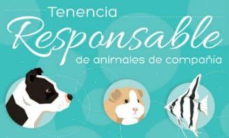 Ministerie komt met nieuw actieplan om het bewustzijn wat betreft dieren in Spanje te verbeteren