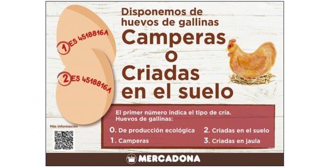 Grootste eieren producent van Spanje gaat alleen nog eieren van loslopende kippen aan Mercadona leveren