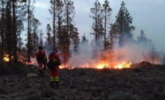 Grote bosbrand op Canarische eiland Tenerife legt bijna 250 hectare natuur in de as (UPDATE)
