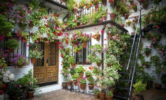 """Het is weer tijd voor het bloemenfeest """"patios de Córdoba"""""""