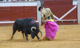 San Fermín in Pamplona zonder stierenvechten