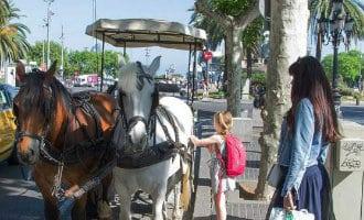 Geen paard-en-wagens voor toeristen meer in Barcelona