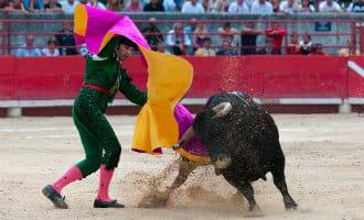 Europees Parlement wil EU-subsidies stierenvechten Spanje stopzetten