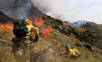 Meer dan 50 geëvacueerden door bosbrand nabij Casares in provincie Málaga