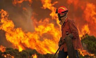 Rustig bosbrand jaar voor Spanje tot nu toe in 2018