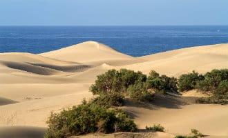 Duinen van Maspalomas op Gran Canaria krijgen nieuw zand