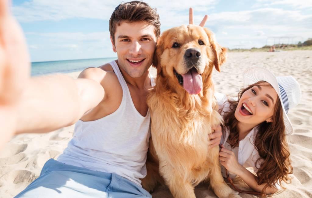 Hondenstranden op de Balearen en aan de Middellandse Zee in Spanje