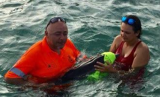 Baby dolfijn gered voor de kust van San Javier in Murcia
