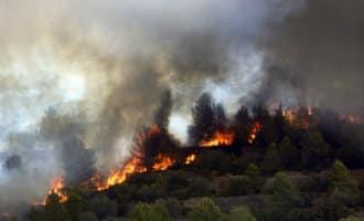 Wind duwt bosbrand Valencia richting badplaats Gandia en verwoest 3.003 hectare (foto's)