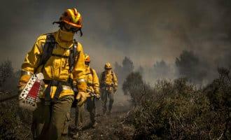 Bosbrand nabij Gandia in Valencia gestabiliseerd