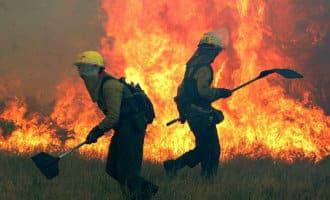 Veel bosbranden in 2018 bij Middellandse Zeekust