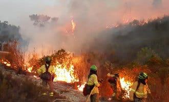 Grote bosbrand in de provincie Huelva
