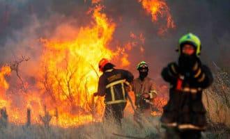 Vijf keer minder bosbranden in Spanje in 2018
