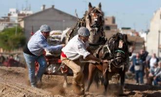 """Dierenpartij klaagt over schoppen van paard bij """"tiro y arrastre"""" feest in Valencia"""