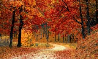 Enkele redenen waarom de herfst het beste seizoen is om Spanje te bezoeken