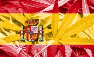 Legalisatie van cannabis in Spanje zou de schatkist 3,3 miljard euro opleveren