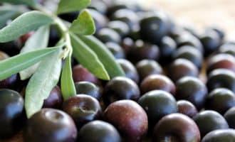 Export van zwarte olijven naar de Verenigde Staten met 70 procent gedaald