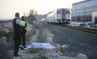 Vrouw overreden door trein bij redden van hond