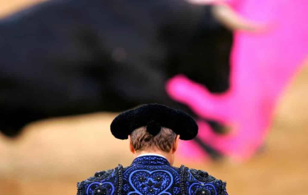 De PP stelt vragen aan de PSOE over stierenvechten en de jacht in Spanje