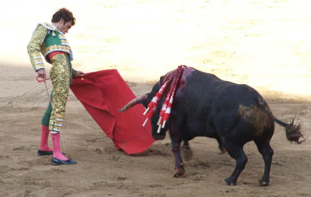 Anti stierenvechten wet Balearen ongeldig verklaard dankzij een PP-wet.