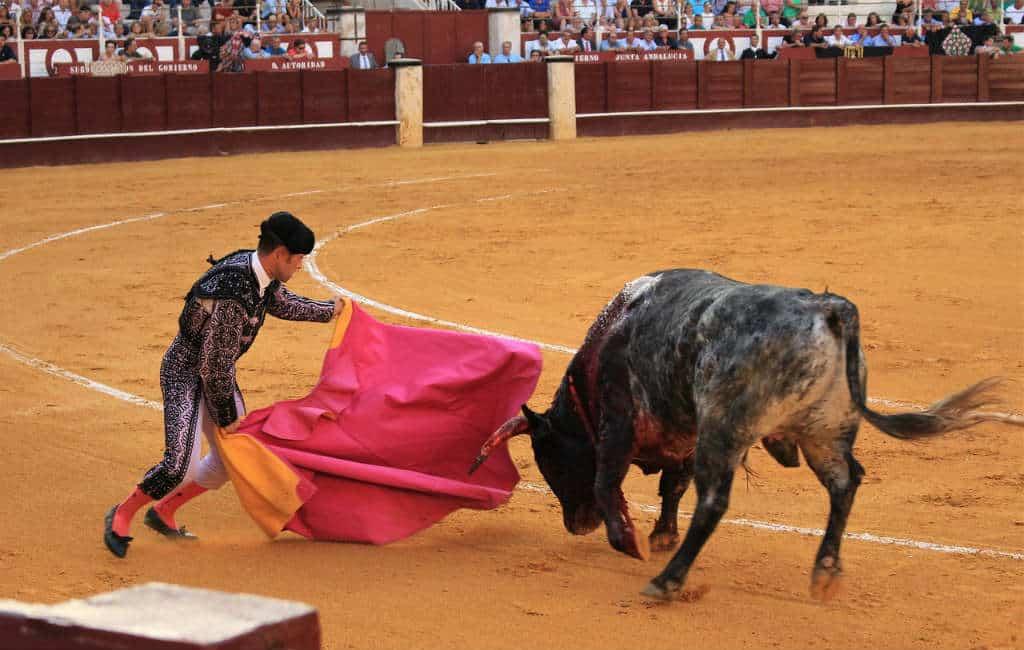Steeds minder Spanjaarden gaan naar het stierenvechten