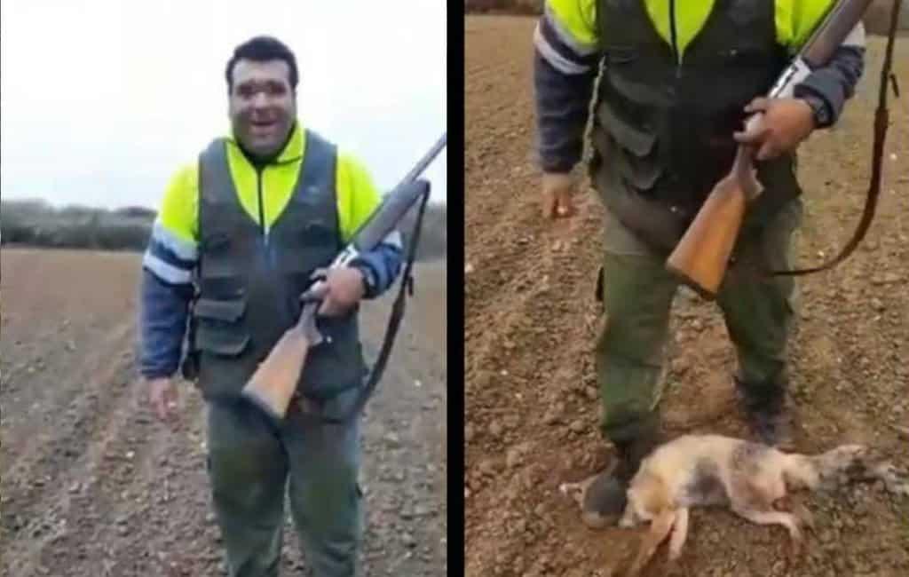 Jacht geopend op jager die vos voor dood mishandeld in Spanje