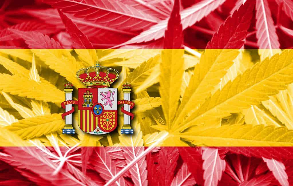Spanjaarden verdeeld over legalisatie van marihuana