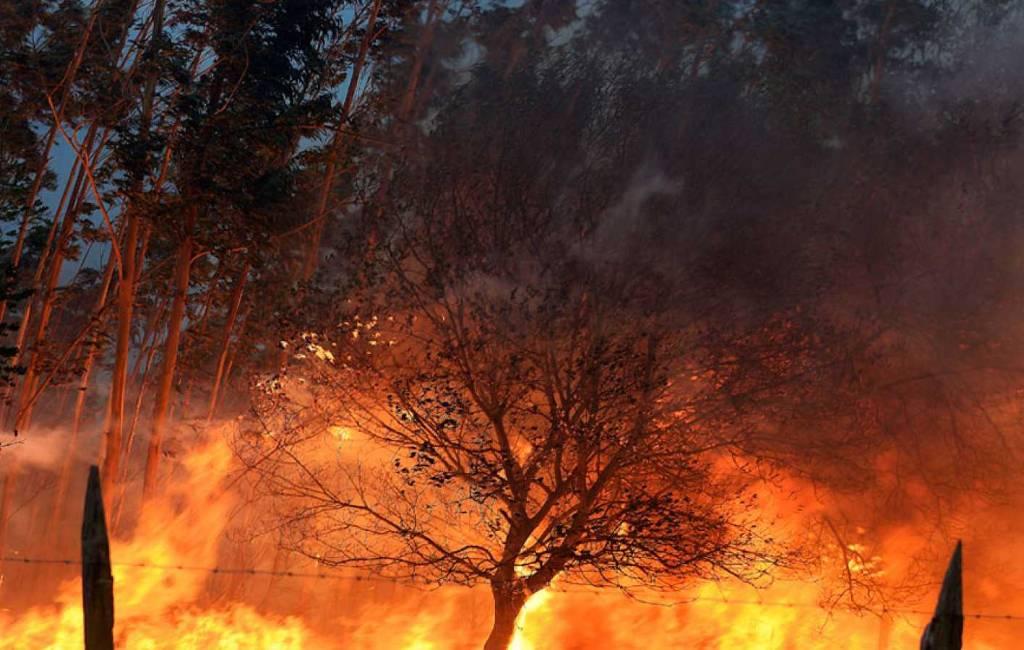 Bijna 30 bosbranden actief in Noord Spaanse Cantabrië
