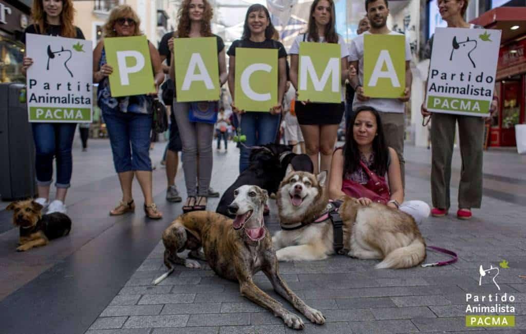 Waarom stemmen op de Partij voor de Dieren in Spanje geen goed idee is